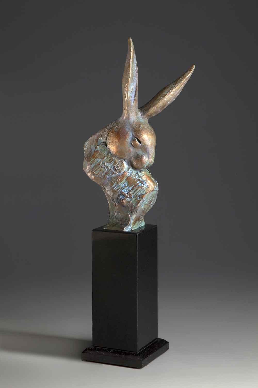 Rabbit Radar