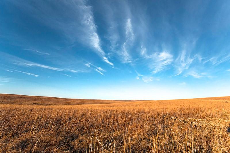 Autumn Horizon