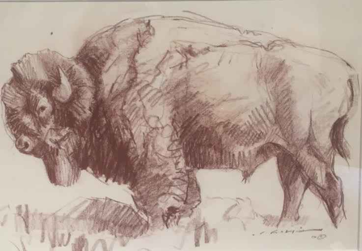 Big Blue Buffalo