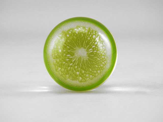 Citrus Slice Marble