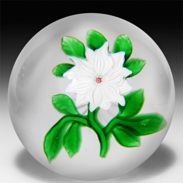 Antique Baccarat white double clematis paperweight. by  Baccarat Antique