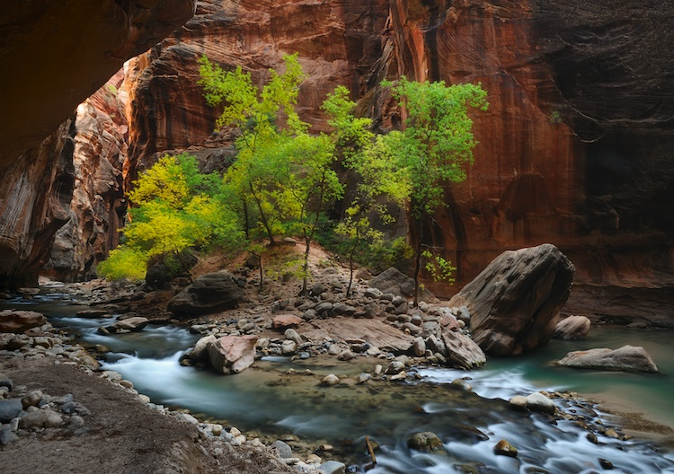 Canyon Oasis by  Shane McDermott - Masterpiece Online