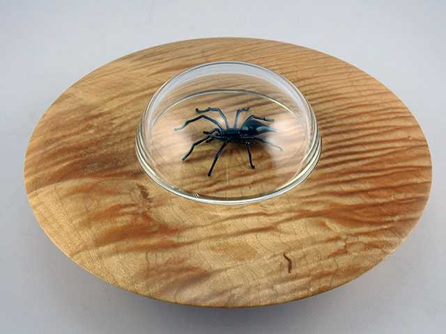 Flying Saucer Spider by  Michael Mangiafico - Masterpiece Online