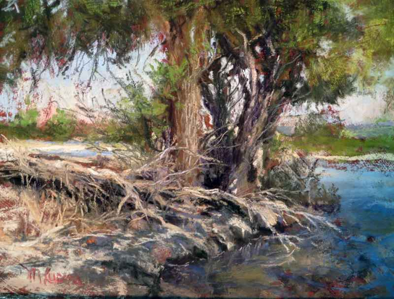 Fallen Cottonwood by Ms. Margi Lucena - Masterpiece Online