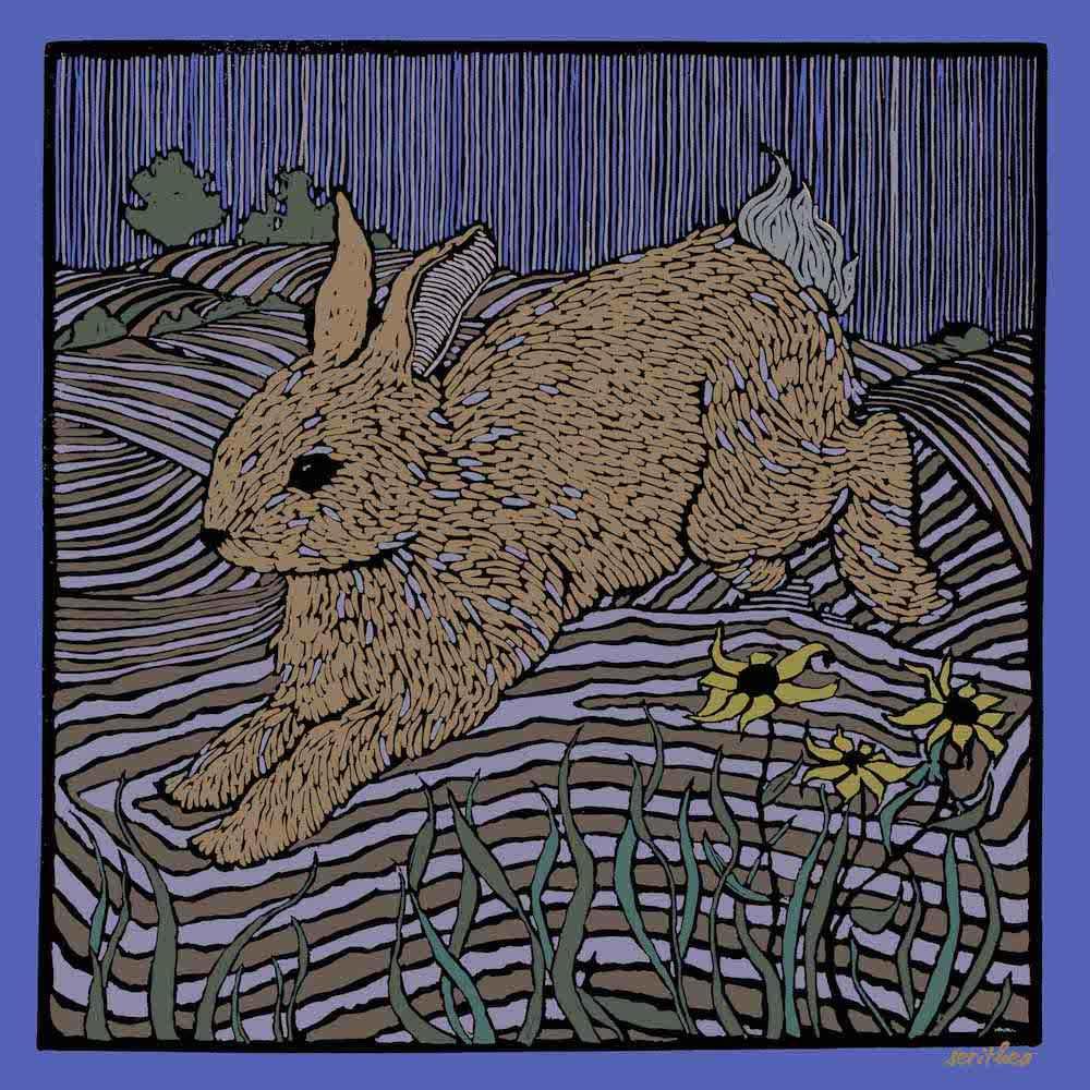 Night Hop Medium Wrap by  Melissa Hefferlin - Masterpiece Online