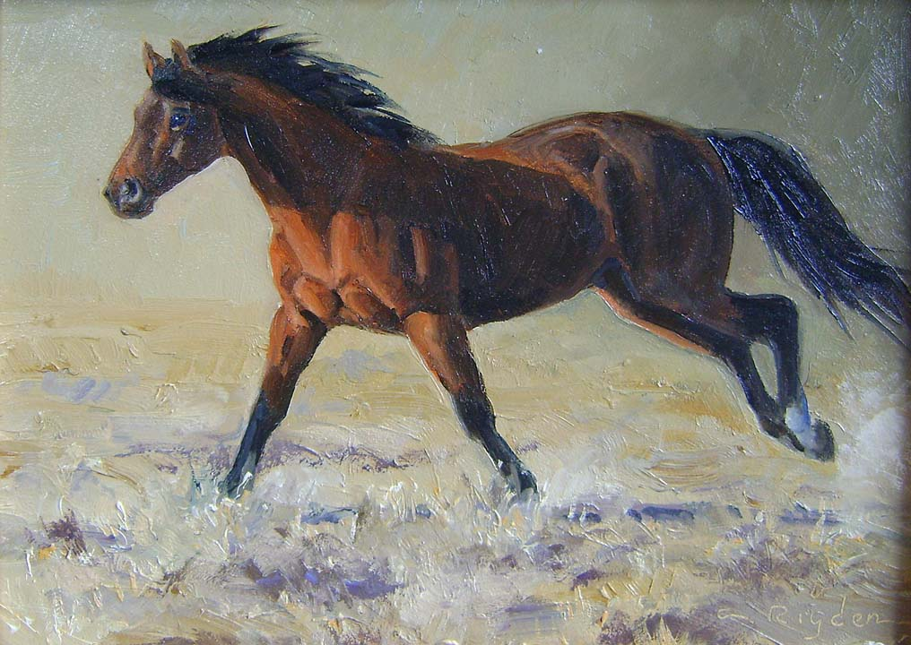 Into The Dawn by Ms. Cynthia Rigden - Masterpiece Online