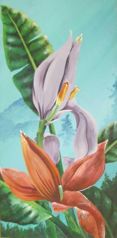 Budding Banana Plant by Mr. Headley Frazer - Masterpiece Online