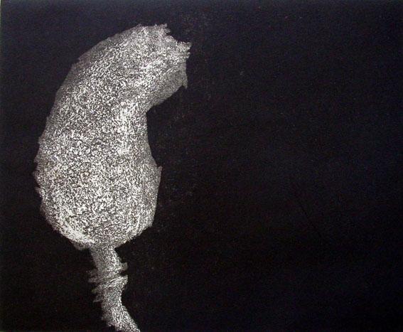 Magnolia  by  Angela Hayson - Masterpiece Online