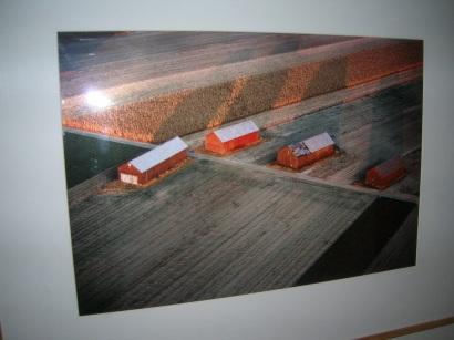 Four Barns by  Julian DeLoch - Masterpiece Online