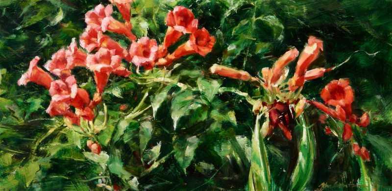 Trumpet Vine by Mr John Austn Hanna - Masterpiece Online