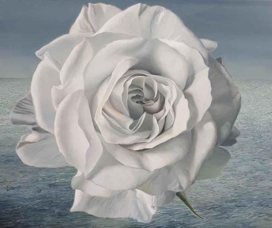 Sea Rose represented  by  Rachel Kline