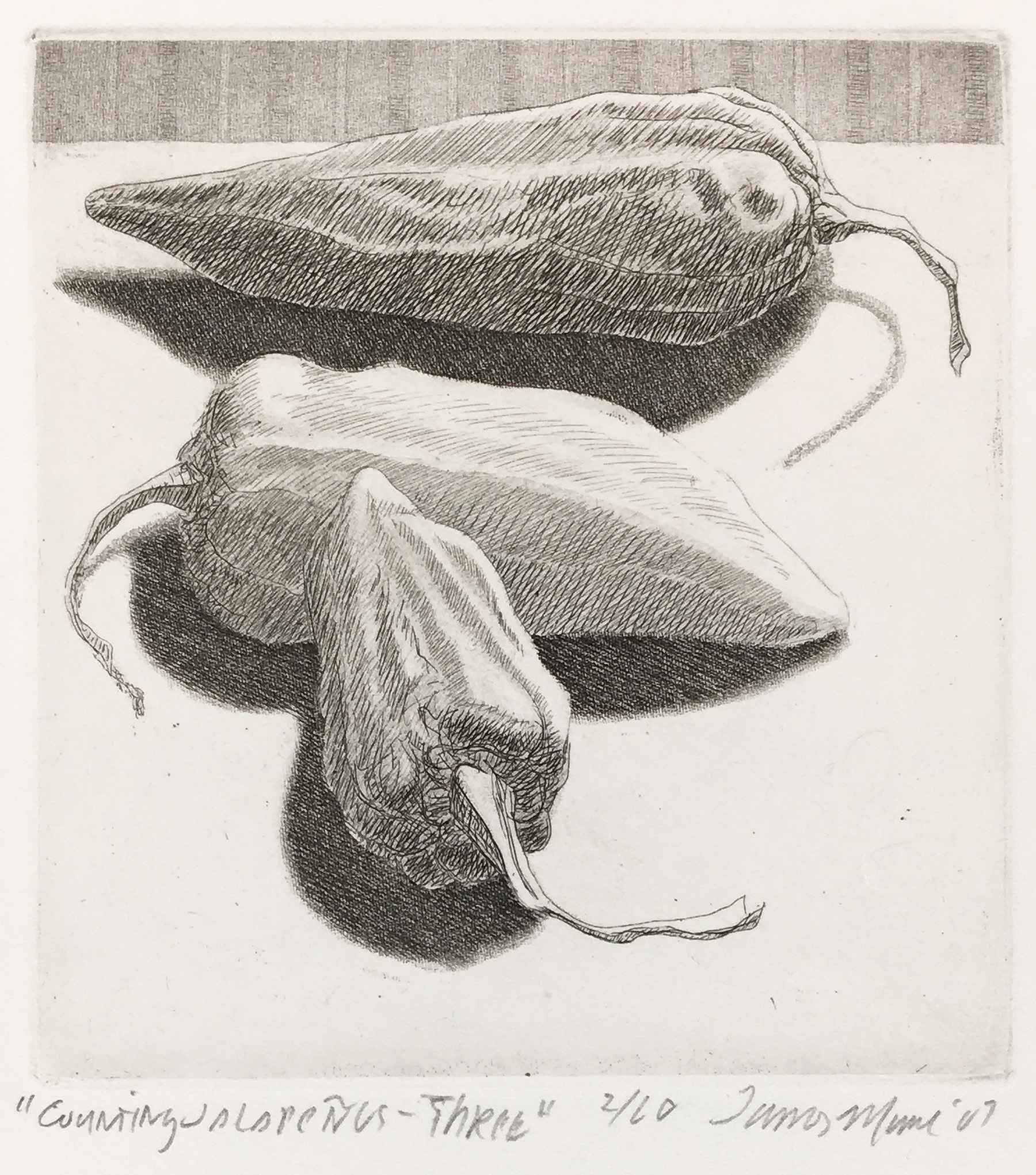 Counting Jalapenos - ... by  James Munce - Masterpiece Online