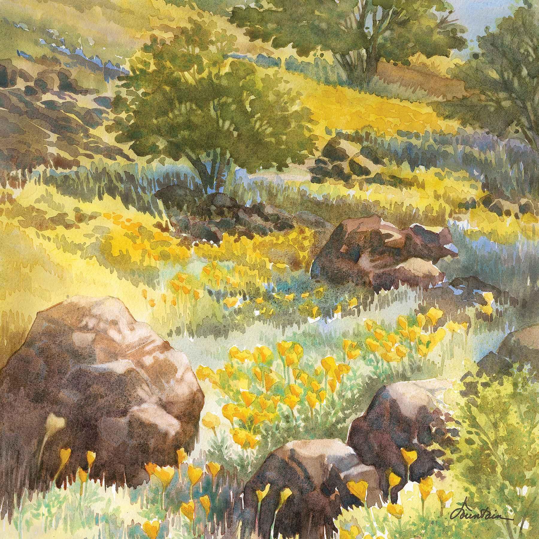 HILLSIDE POPPIES by  Ellen Fountain - Masterpiece Online