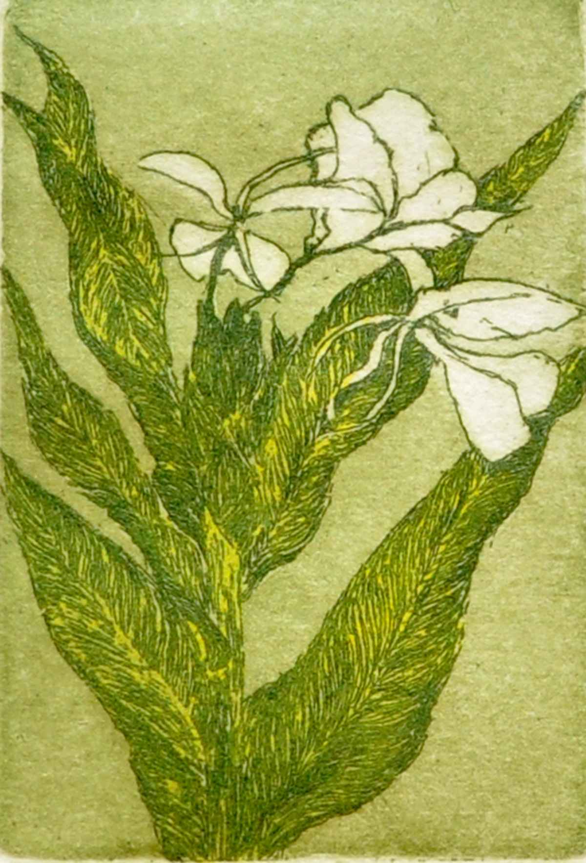 Ginger Lilly by  Susan Baehmann - Masterpiece Online