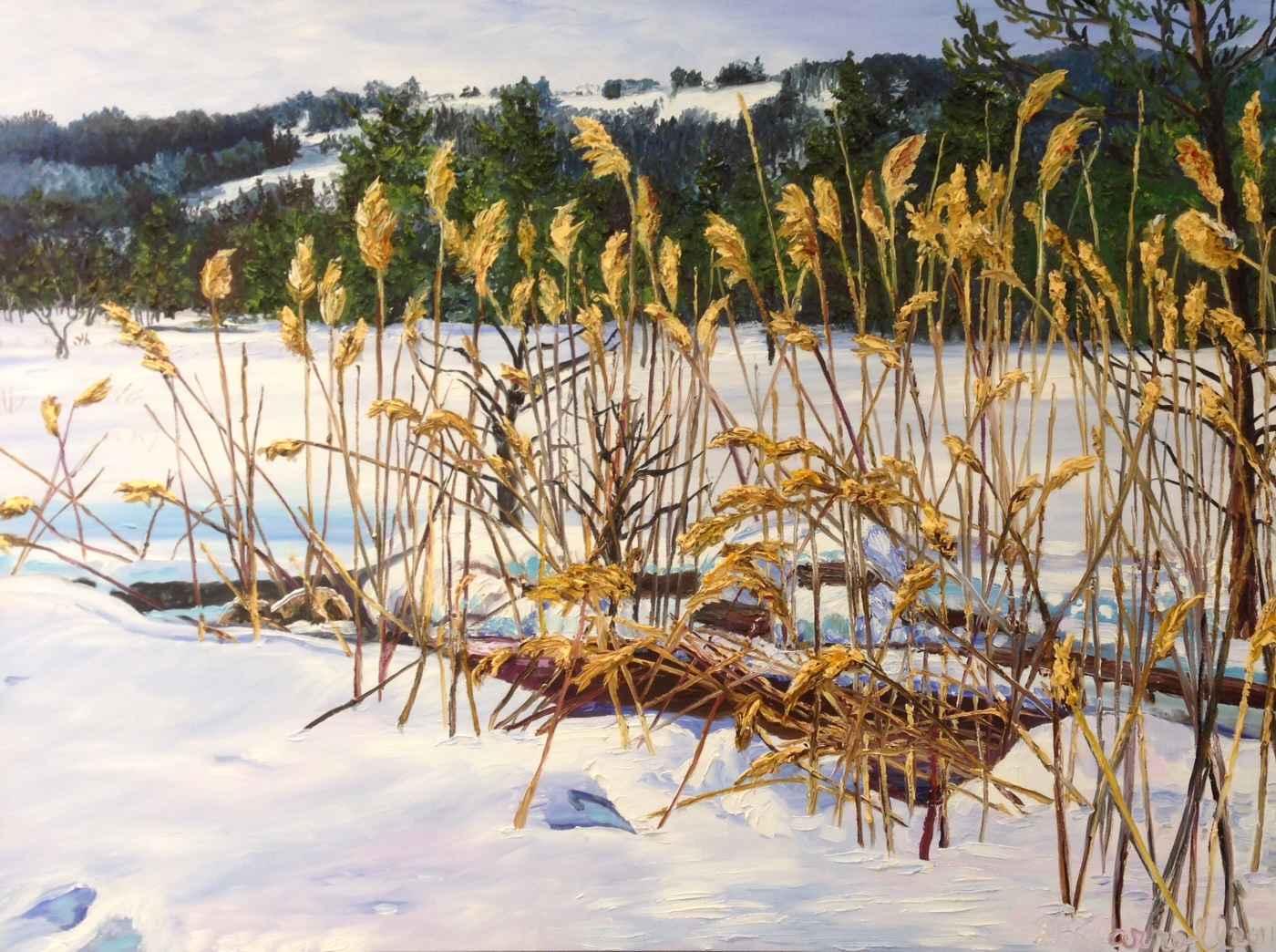 Winter In The Beaver ... by Ms Debra Lynn Carroll - Masterpiece Online