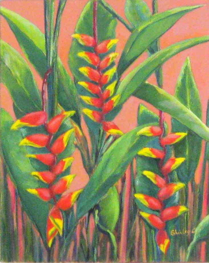 Rostrata On Peach by  Shirley Chaderton - Masterpiece Online