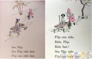 See Flip