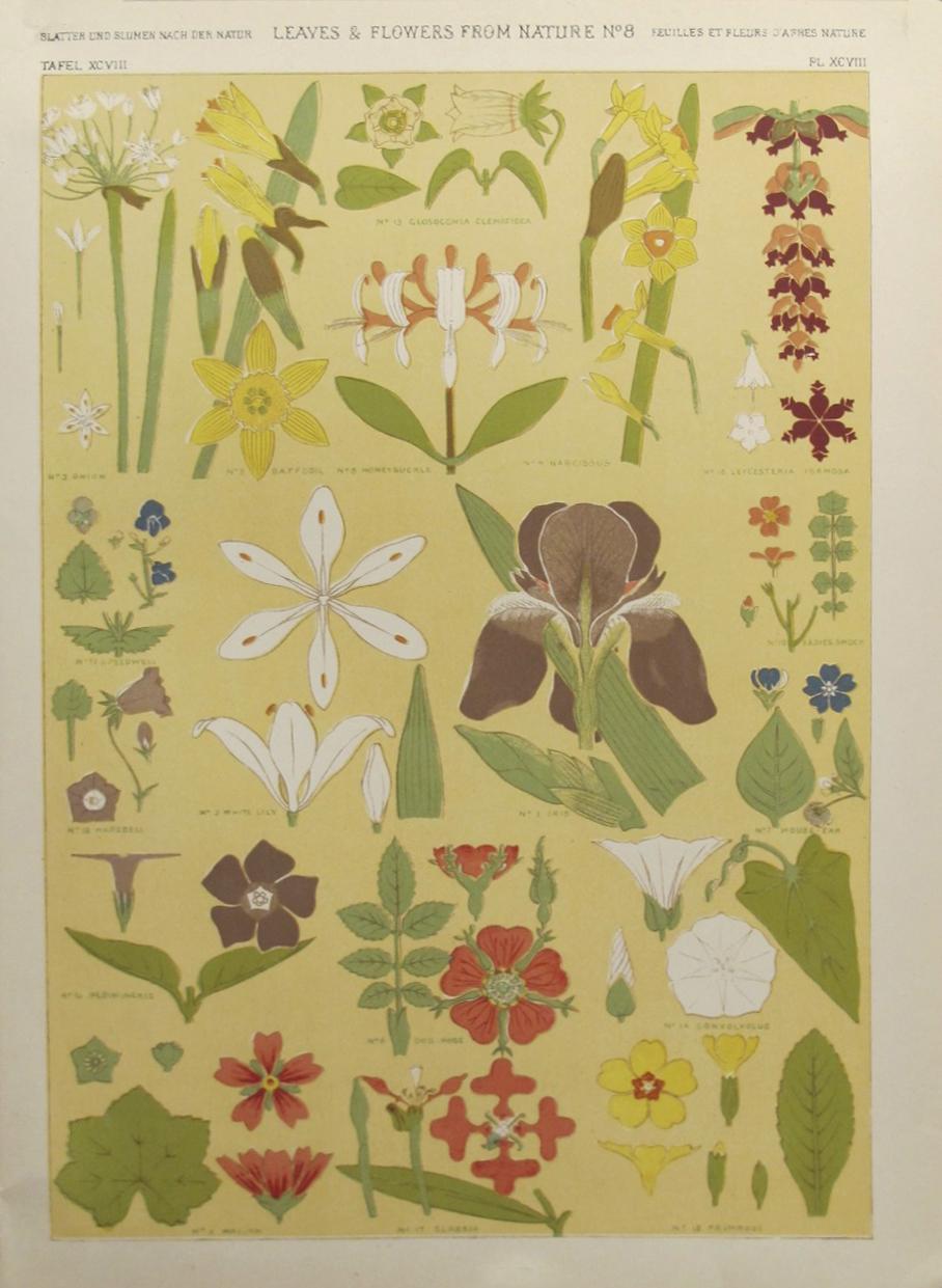 OKL - Decorator Sheet... by  Owen Jones - Masterpiece Online