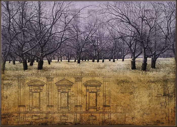 Orchard III by  David Smith-Harrison - Masterpiece Online