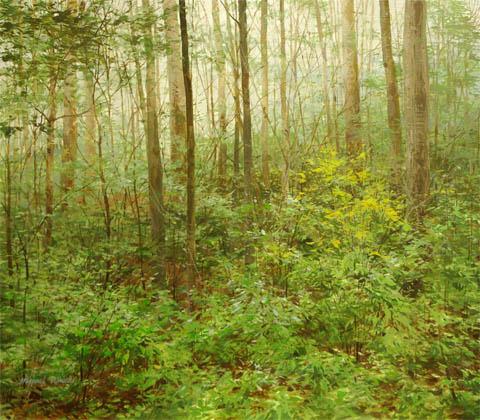 Dense Woods - Foggy M... by  Michael Wheeler - Masterpiece Online
