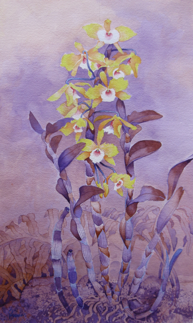Gold Star Orchids by  John Thomas (1927-2001) - Masterpiece Online