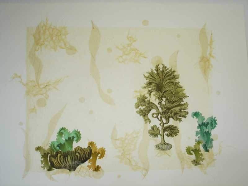 Coral Collage 1 by  Margo Ray - Masterpiece Online