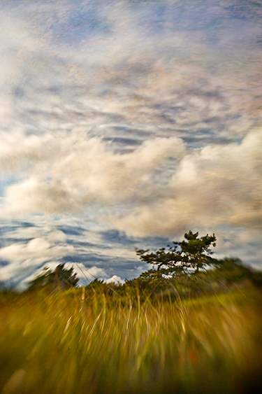 Sunset Clouds, 2009 by  Michael Stimola - Masterpiece Online
