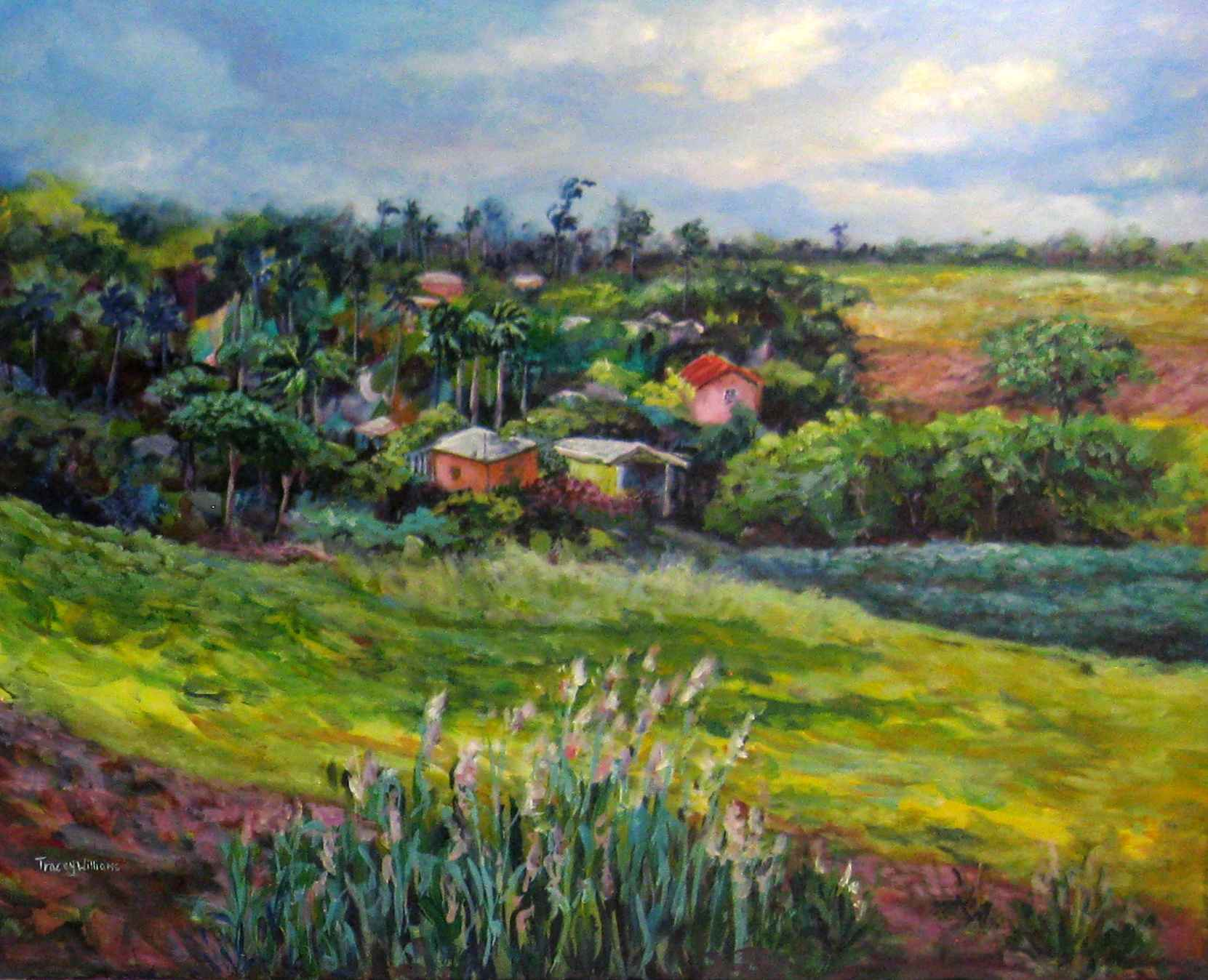 Wakefield St John by Ms. Tracey Williams - Masterpiece Online