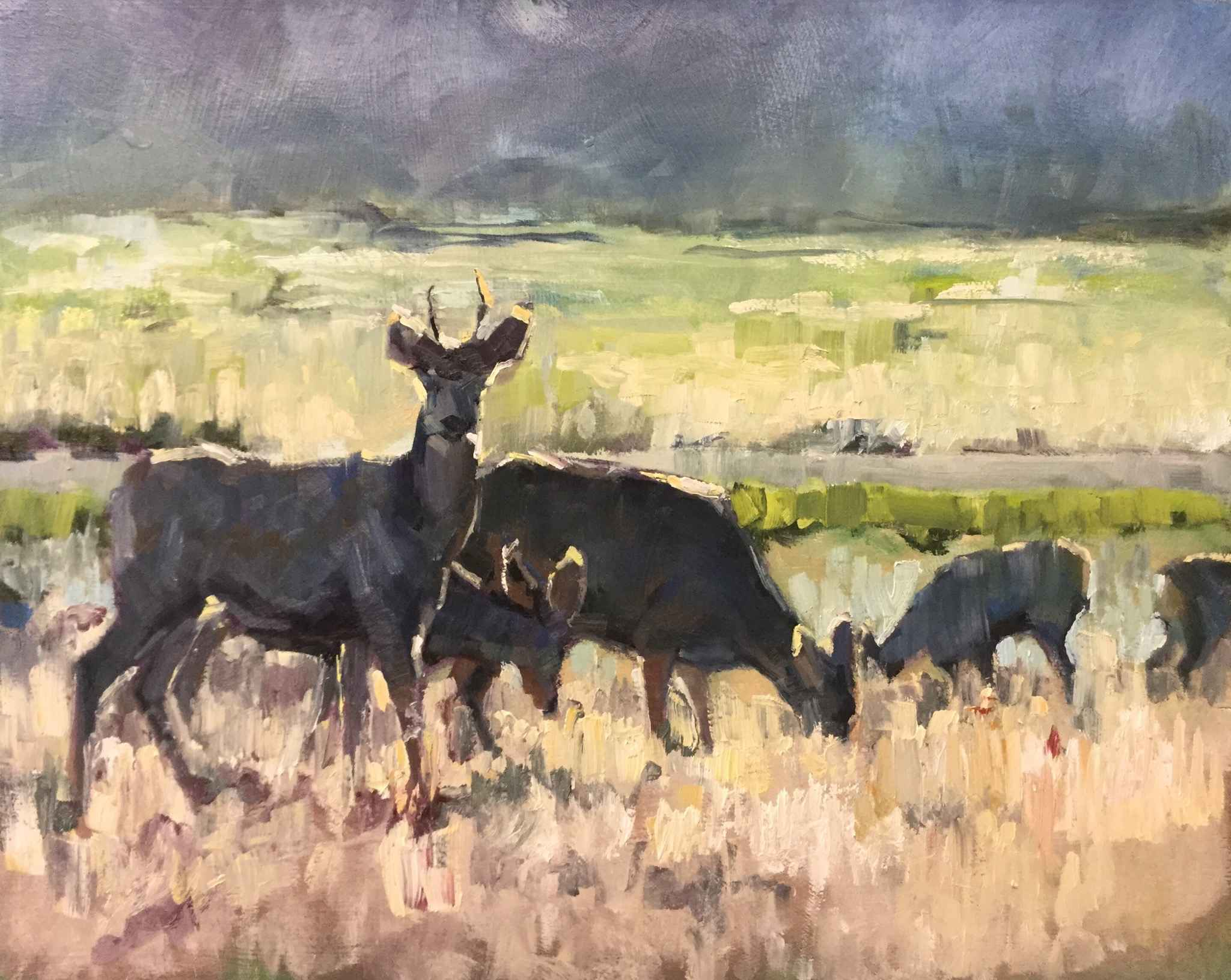 Morning in Westcliffe by  Heather Arenas - Masterpiece Online