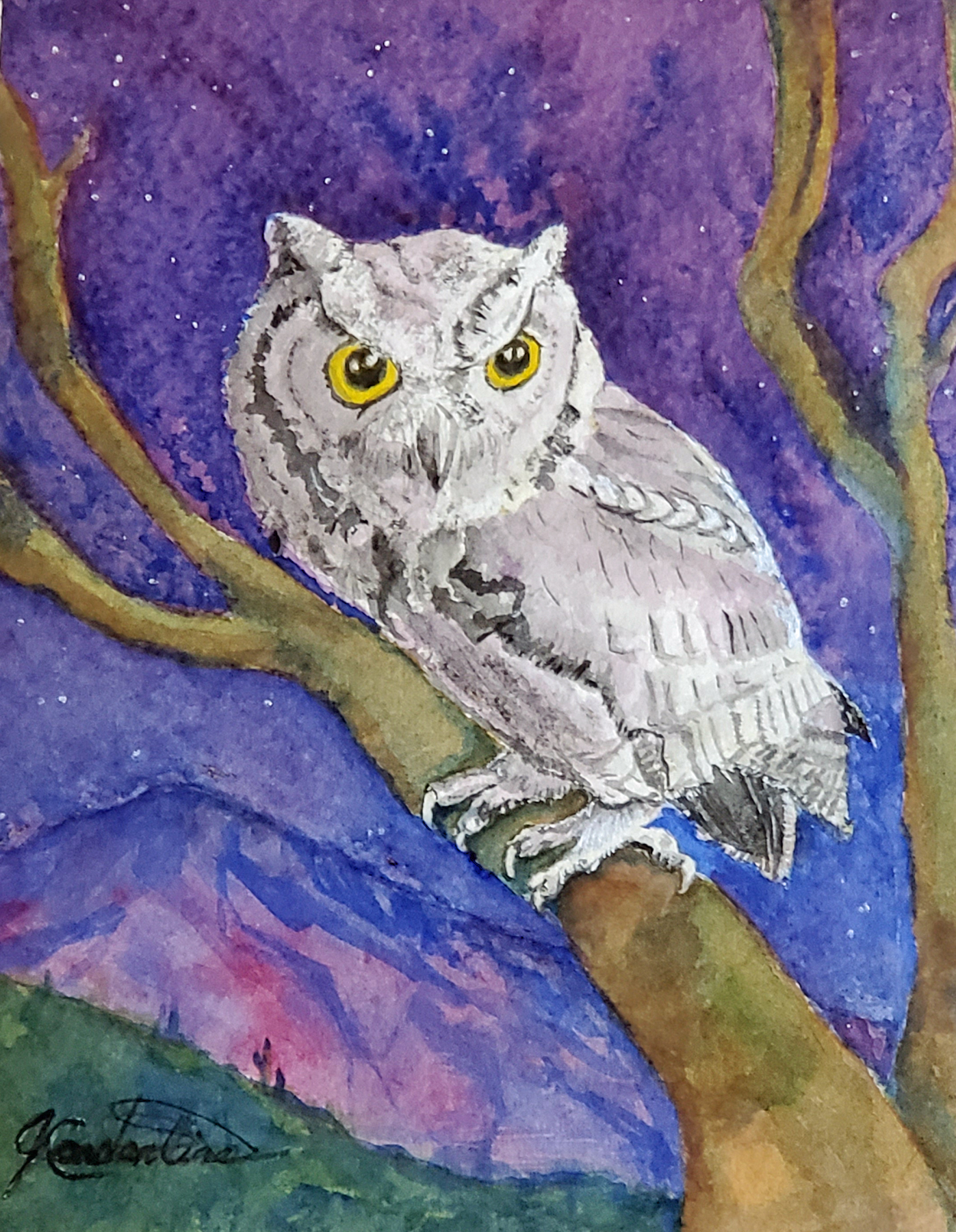 Screech Owl Night Por... by  Judy Constantine - Masterpiece Online