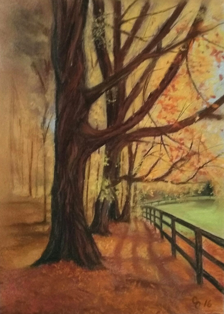 Kentucky Sunshine  by  Cindy Cave