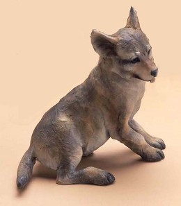 Coyote Pup SD by  Star York - Masterpiece Online