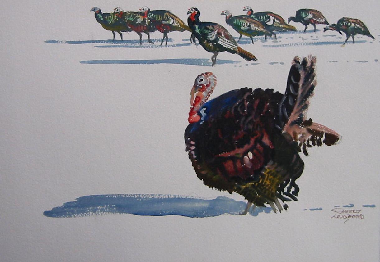 Turkeys Sketch II by  Robert Lougheed - Masterpiece Online