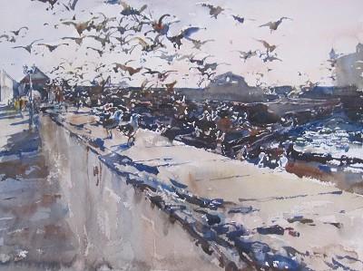 Essaouira Seagulls, I by  Daud Akhriev - Masterpiece Online