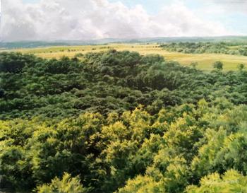 Woods & Fields, View ... by  Michael Wheeler - Masterpiece Online