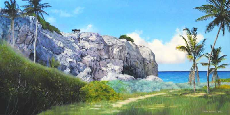 Coral Cliff near Bott... by Mr. Stephen Bonner - Masterpiece Online