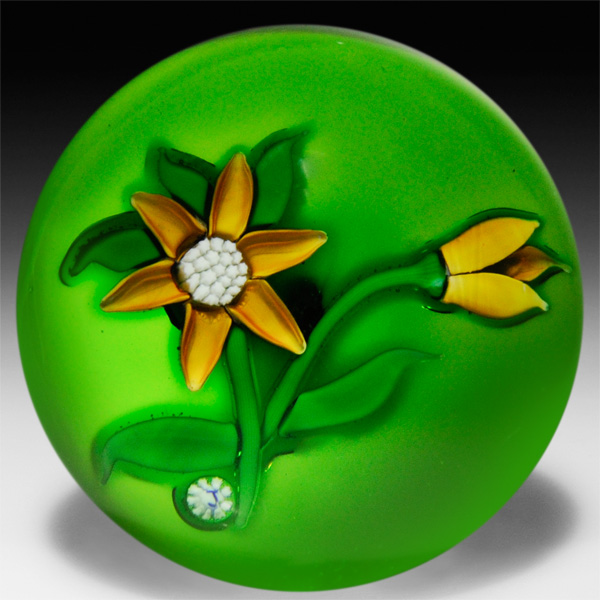 J Glass golden-yell... by  J Glass - Masterpiece Online