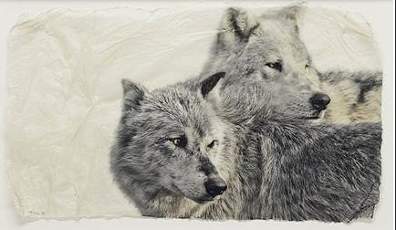 Last Look Back by  Pete Zaluzec - Masterpiece Online