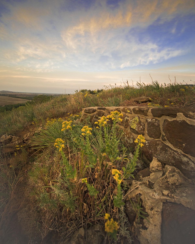 Flowers, Standstone by  George Jerkovich - Masterpiece Online