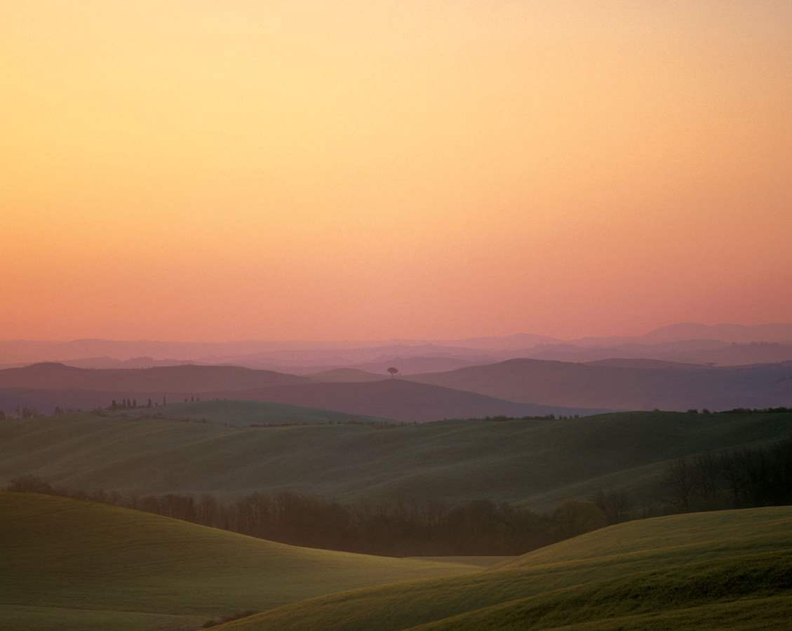 Tuscany II 2003 R1 by  Alison Shaw - Masterpiece Online