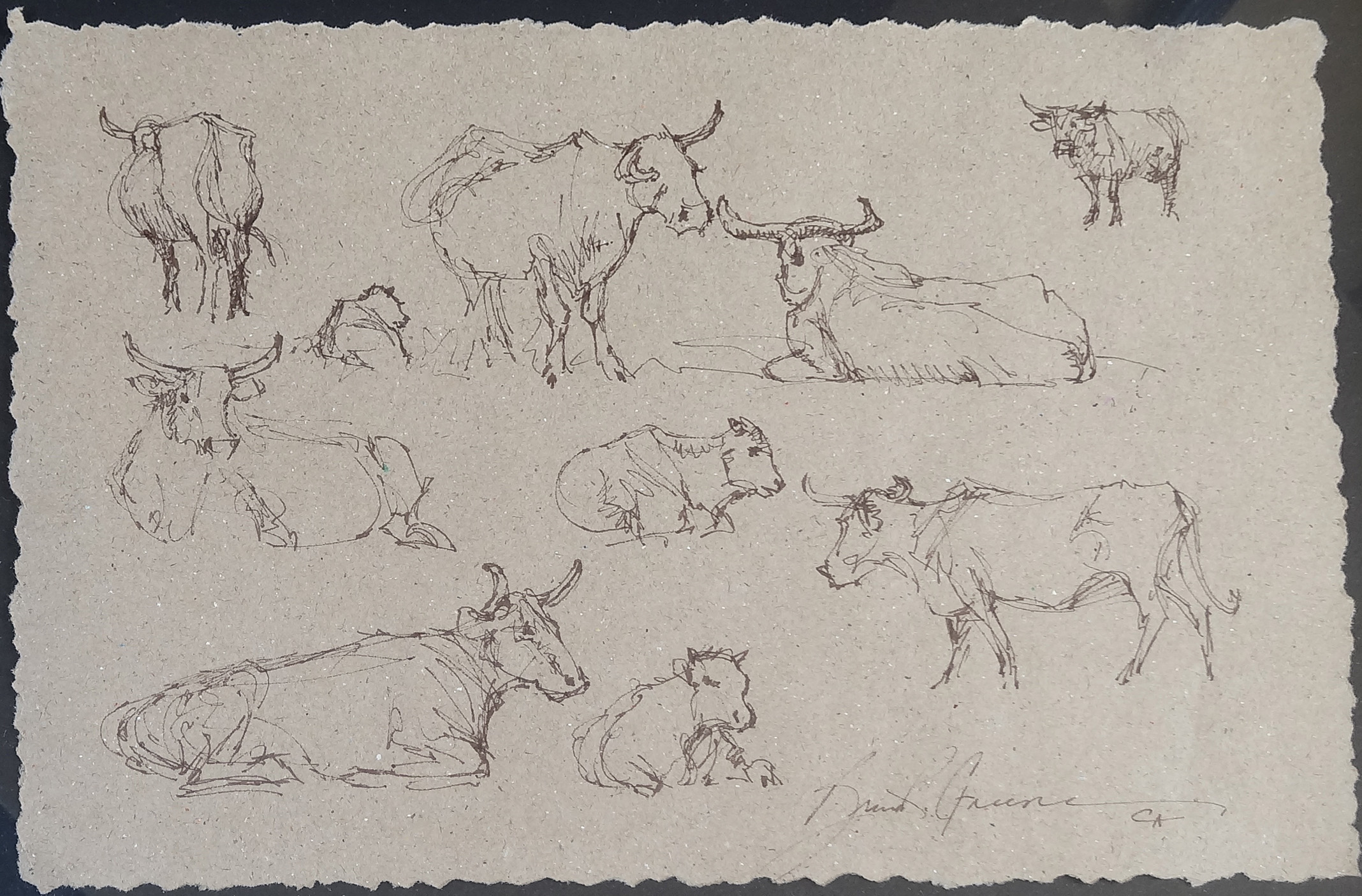 Ten Cow Drawing #1 by Mr. & Mrs. Bruce Greene - Masterpiece Online