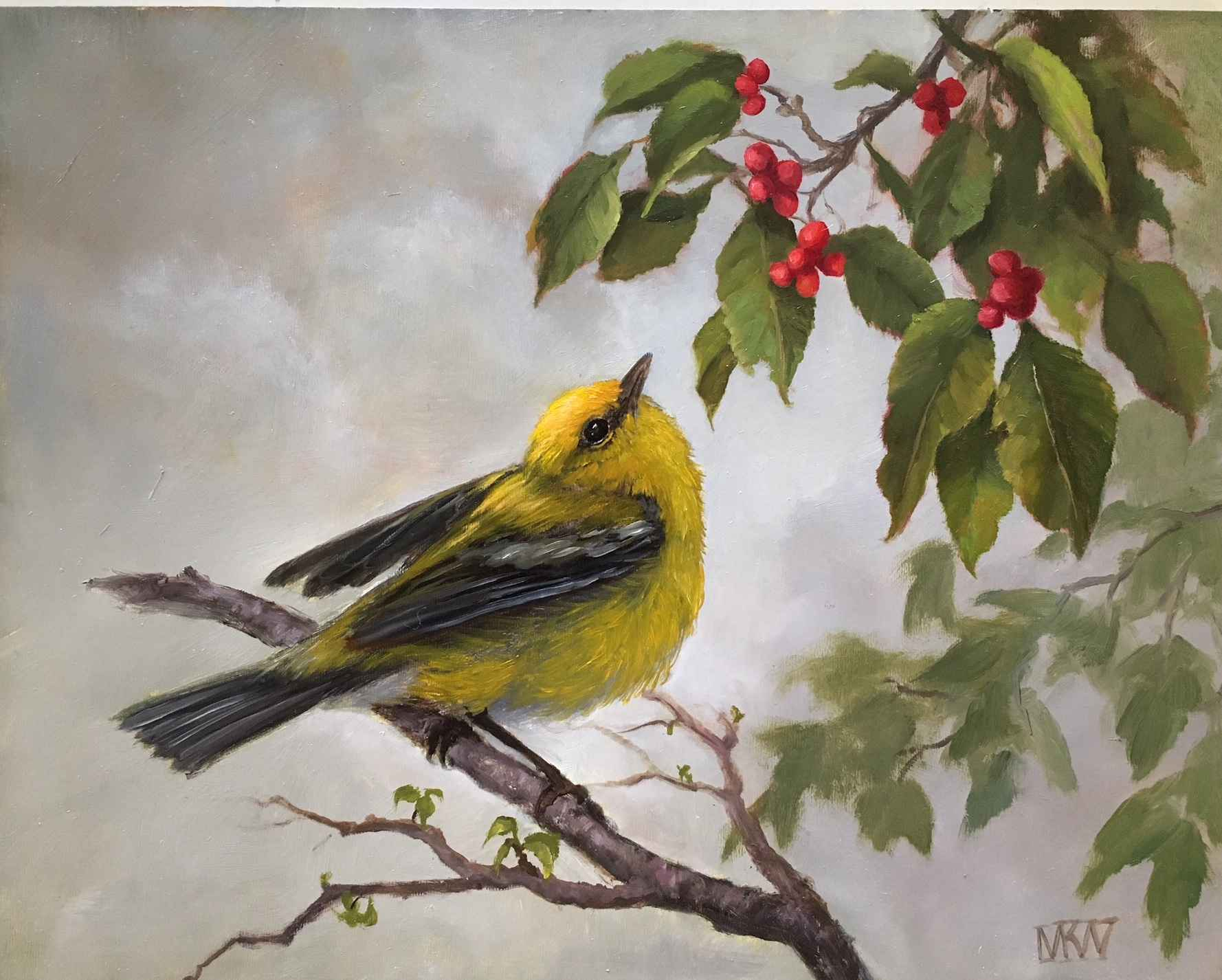 Warbler with Red Berr... by  Mary Kay  West  - Masterpiece Online