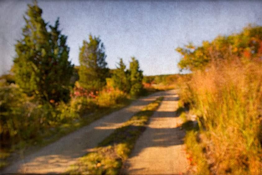 Autumn Palette, 2006 by  Michael Stimola - Masterpiece Online