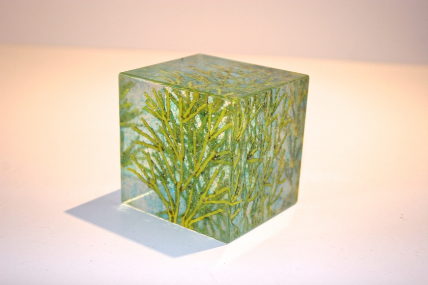 Lime Green Coral Cube by  Emma Varga - Masterpiece Online
