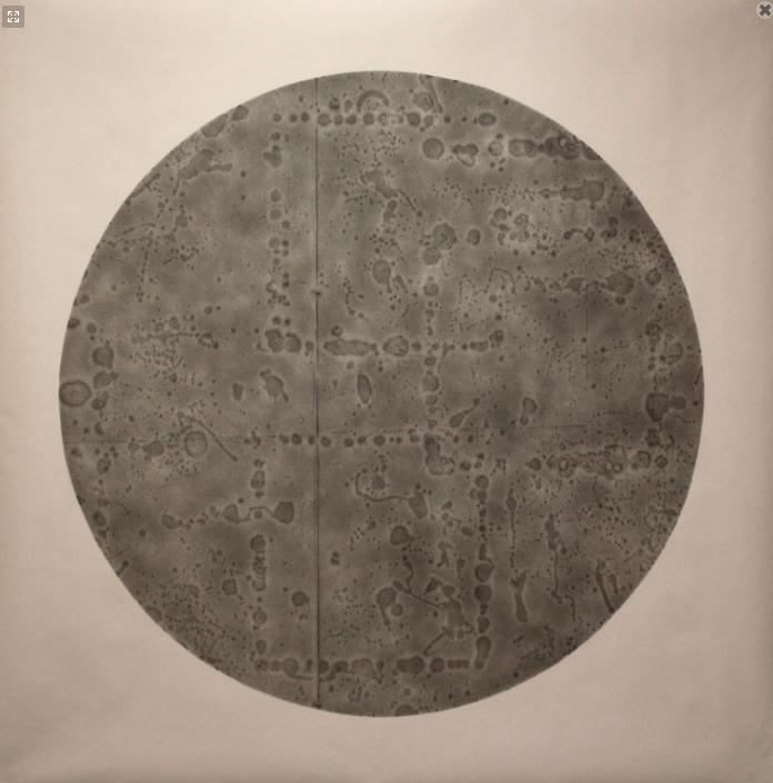 Specimen #3 by Mr. Lexygius Calip - Masterpiece Online