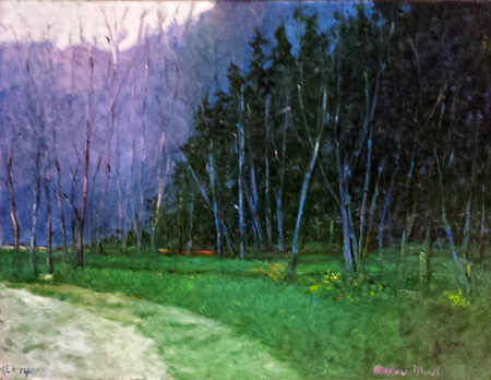 Twilight in the Woods  by  Andres  Morillo