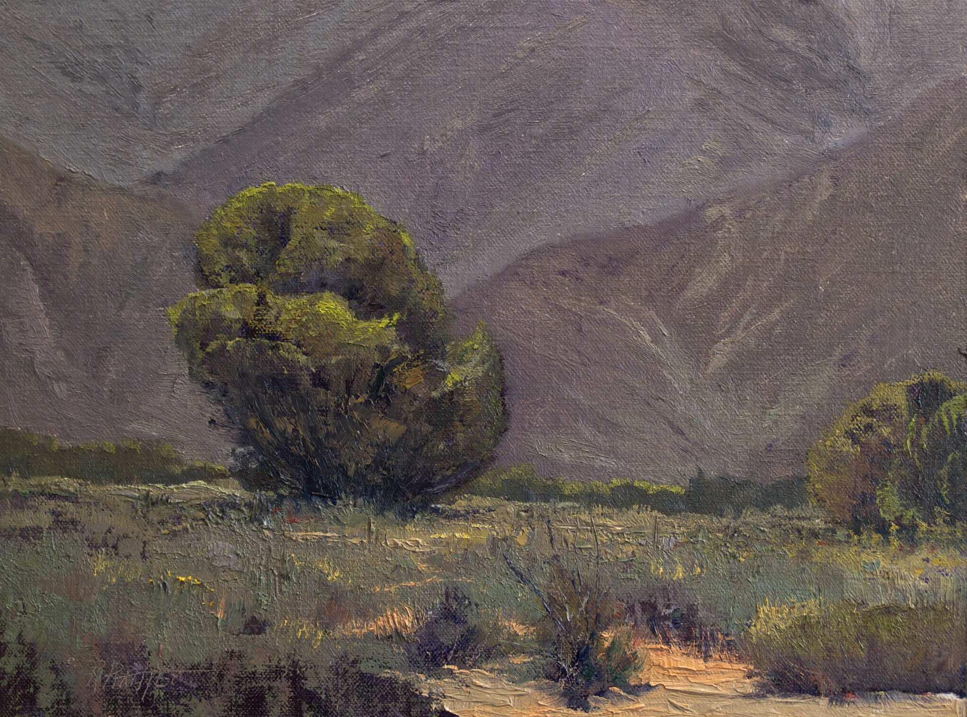 Juniper by Mr Richard Prather - Masterpiece Online