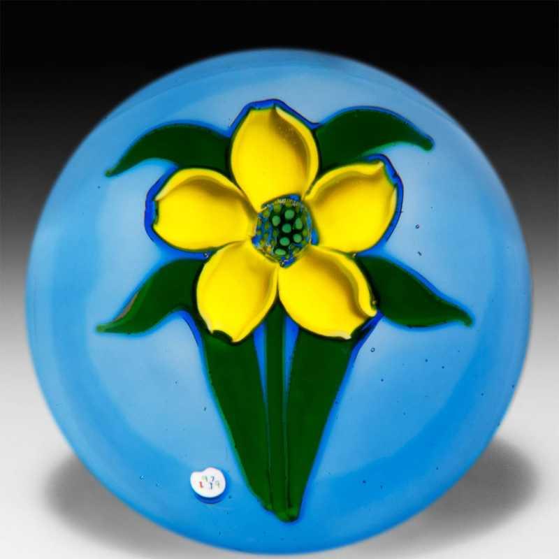 J Glass Bloom in M... by  J Glass - Masterpiece Online
