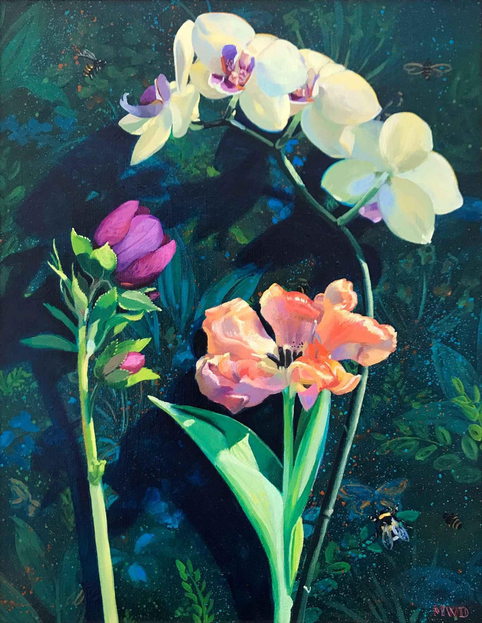 Pale Yellow Orchid  by  Michelle Waldele