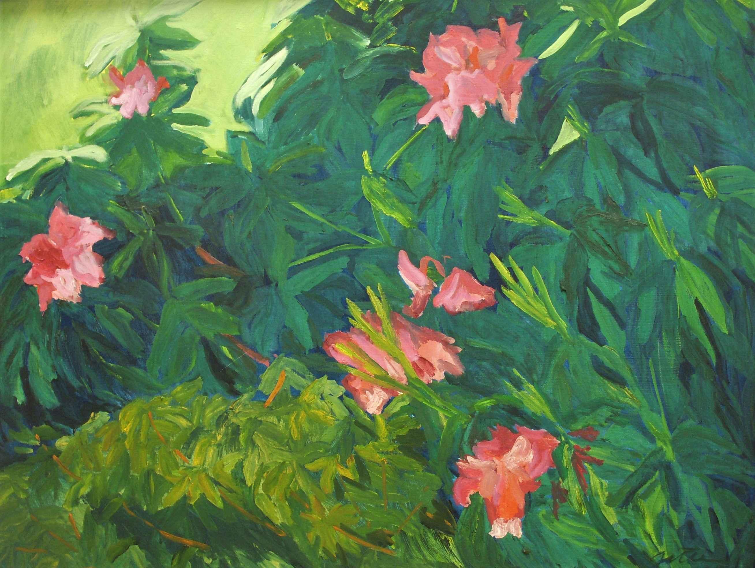 Unknown (Rhodies) by  Shirley Gittelsohn - Masterpiece Online